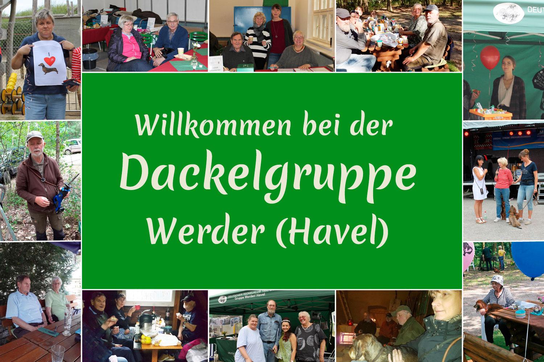 Willkommen bei der Dackelgruppe Werder (Havel)