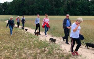 Spaziergang Juni 2020