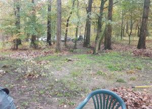So viel Laub - und dabei waren die Bäume noch immer voller Blätter